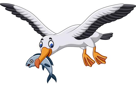 Early Bird Bonus Entry!